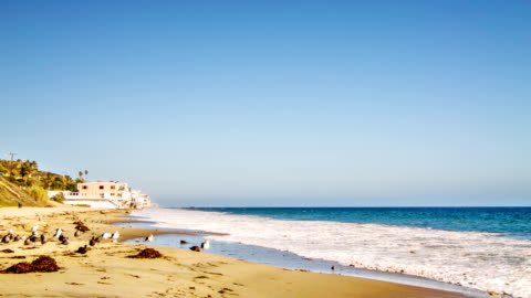 sea, birds and house on the beach - laguna beach california stock videos & royalty-free footage