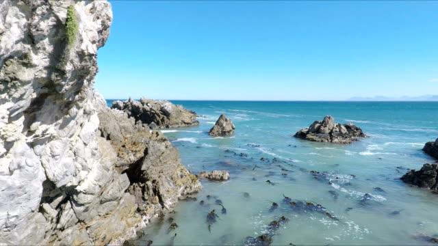 Mare diavolo o Littoral diavolo, Gaans Baai, Provincia del Capo occidentale, Sudafrica