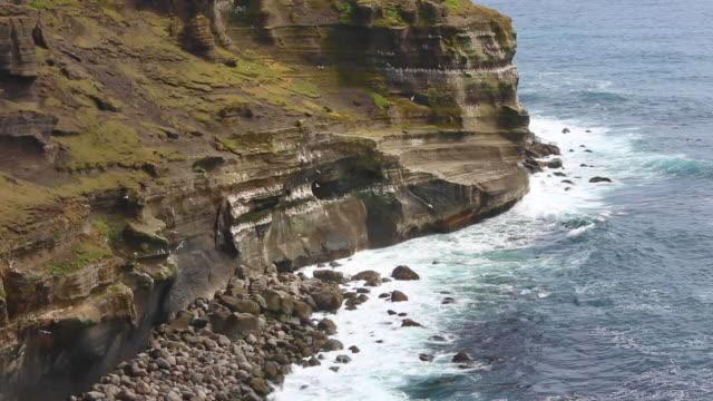 vídeos de stock, filmes e b-roll de sea cliffs at krýsuvíkurbjarg, iceland - paredão rochoso