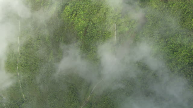 MS AERIAL VERTICAL Sea Cliffs of Molokai covered in clouds with waterfalls running down them / Hawaii, United States