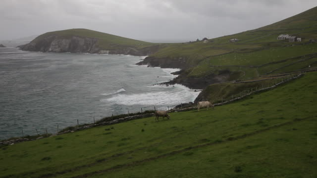 ws ld sea coastline / ireland - establishing shot stock videos & royalty-free footage