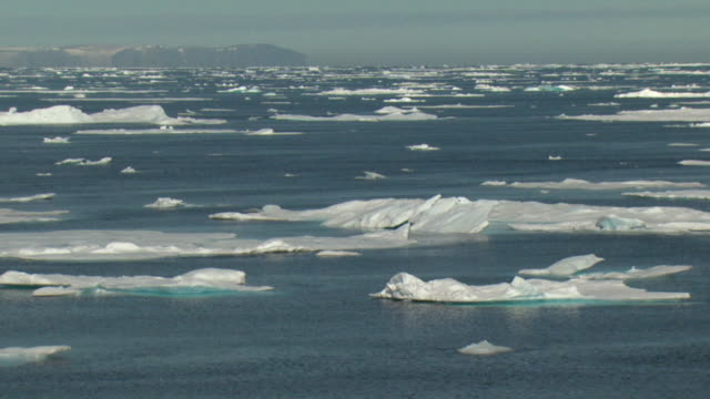 ws pan sea covered with ice floes, nunavut, canada - ice floe stock videos & royalty-free footage