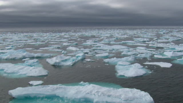 ws pan sea covered with ice floes, nunavut, canada - northwest passage stock videos and b-roll footage