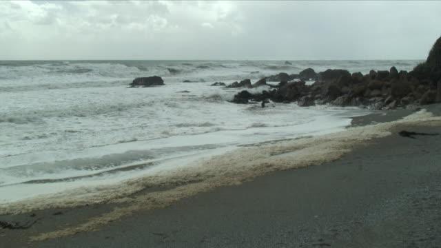 ws sea from beach / punakaiki, new zealand - new zealand stock-videos und b-roll-filmmaterial
