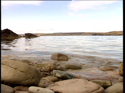 sea gently lapping over pebbles on shore as bird glides over water - nordatlantik stock-videos und b-roll-filmmaterial