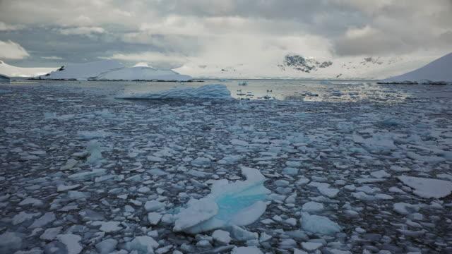sea ice at enterprise island, antarctica - antarctica drone stock videos & royalty-free footage