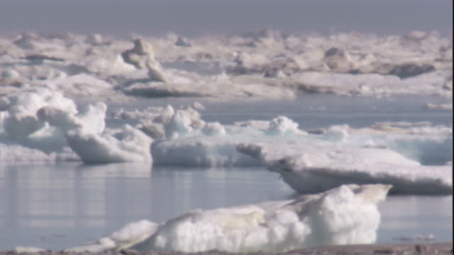 vidéos et rushes de sea ice drifts over the arctic ocean. available in hd. - hot