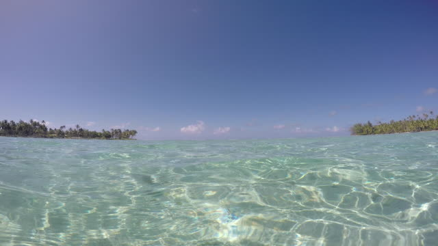vídeos de stock e filmes b-roll de sea, lagoon in front of an island with trees - cultura taitiana