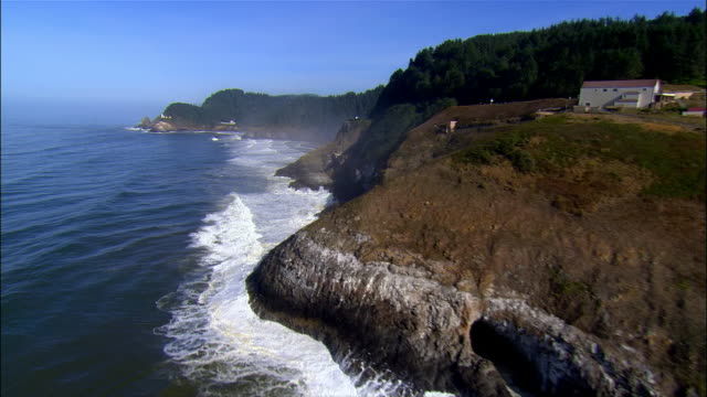 aerial sea lion point, oregon, usa - オレゴン州点の映像素材/bロール
