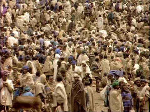 wa sea of african villagers at market, ethiopia, africa - livestock stock videos & royalty-free footage