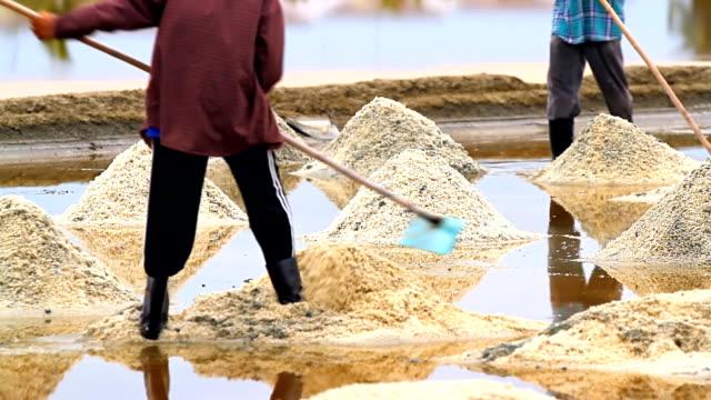 sea salt harvesting - evaporation stock videos & royalty-free footage