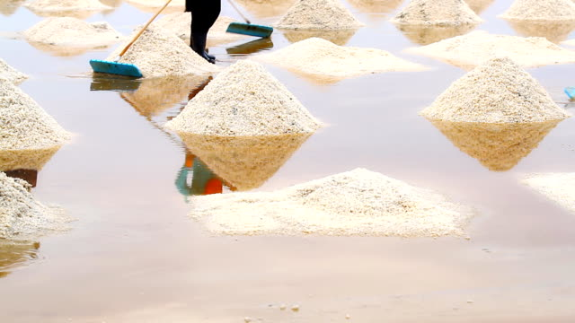 sea salt - evaporation stock videos & royalty-free footage