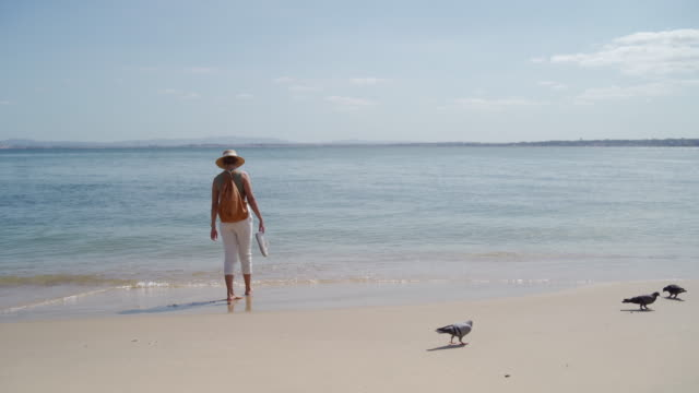 sea, sand and sunny weather is all i need - zen like stock videos & royalty-free footage