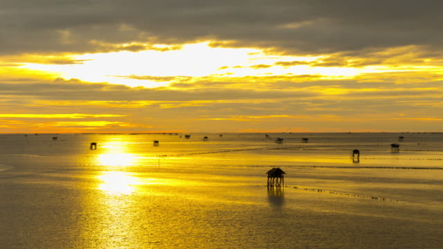 Sea Sunsut