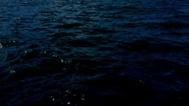 vídeos de stock, filmes e b-roll de superfície do mar à noite - water form