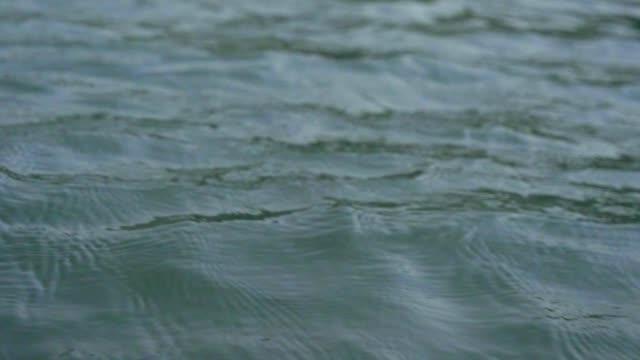 slo mo: sea surface reflection of sunlight. - remo video stock e b–roll