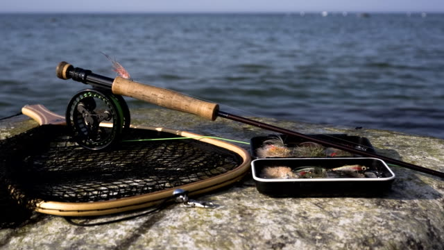 sea trout angler equipment - fishing reel stock videos and b-roll footage