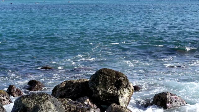 vídeos y material grabado en eventos de stock de olas de mar hit the rock - área silvestre