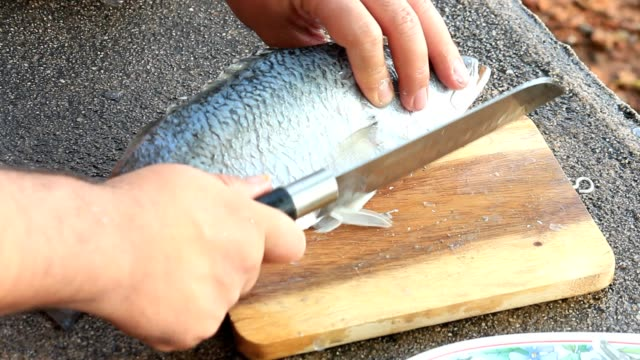 seabass cook - fillet stock videos and b-roll footage