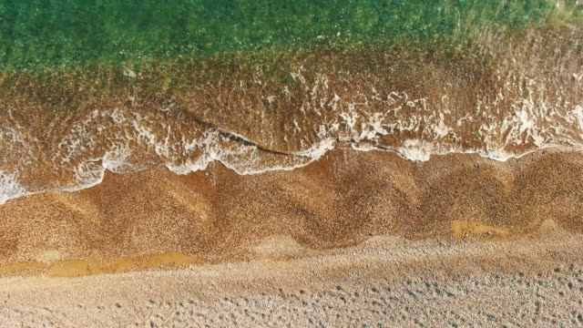 AERIAL: Seabed with seaweed at the water's edge