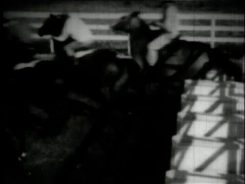 Seabiscuit learning to break from starting gate / New York City New York United States