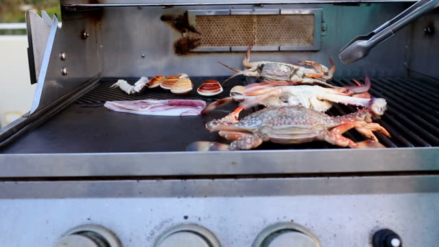 seafood barbecue - prawn animal stock videos and b-roll footage