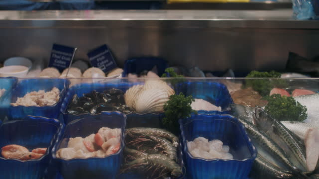 seafood display in fish market - kingsand video stock e b–roll