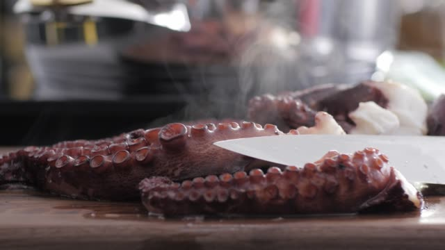 seafood octopus colorful cuisine - fish meal stock videos & royalty-free footage