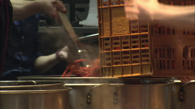 seafood on offer at a night market, shanghai - テナガエビ点の映像素材/bロール