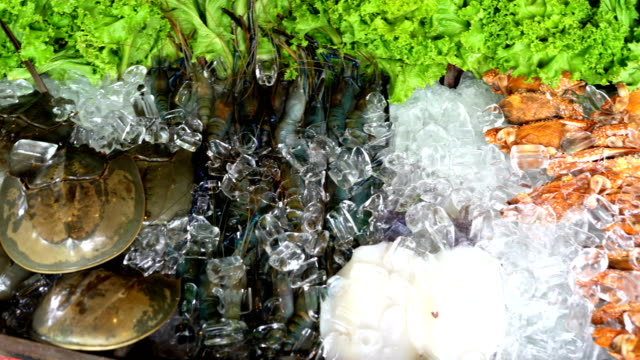 seafood - seafood stock videos & royalty-free footage