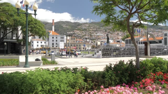 seafront gardens and town in funchal, madeira, portugal, atlantic, europe - kraneinstellung stock-videos und b-roll-filmmaterial