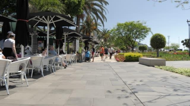 vídeos de stock, filmes e b-roll de seafront gardens and town in funchal, madeira, portugal, atlantic, europe - café de calçada