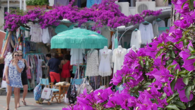 Seafront shops and flowers, Costiera Amalfitana (Amalfi Coast), UNESCO World Heritage Site, Province of Salerno, Campania, Italy, Europe