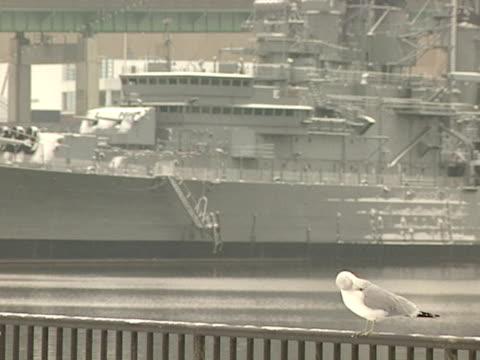 vidéos et rushes de seagull sitting on metal railing w/ uss little rock in bg docked zo ws - se lisser les plumes