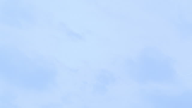 seagulls fly beneath white clouds in the blue sky. - seagull stock videos & royalty-free footage