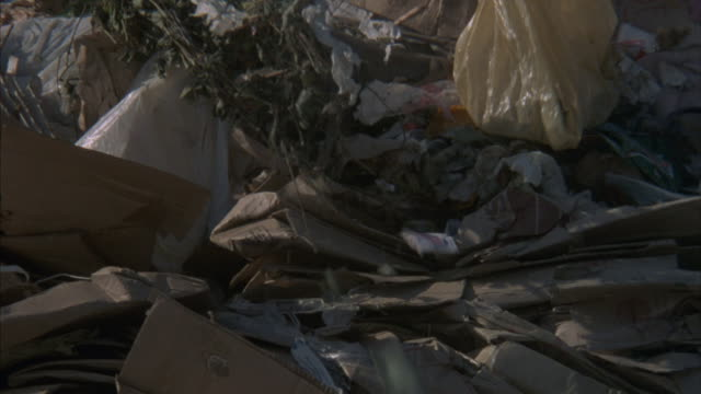 seagulls fly over a junkyard as a bulldozer plows through the garbage. - dump truck stock videos and b-roll footage