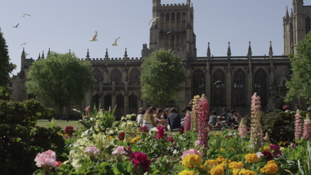 Seagulls fly over people and flower beds in cathedral grounds, Bristol, England