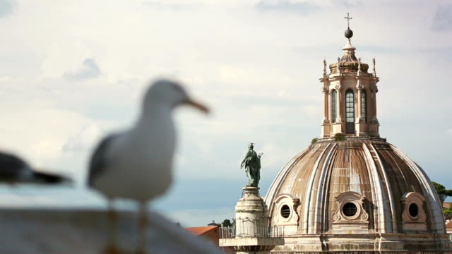 Seagulls of Rome and church domes