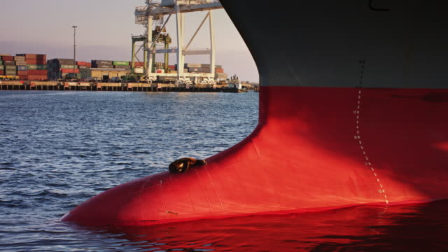 seal basking on bulbous bow of cargo ship in port - ship's bow stock videos & royalty-free footage