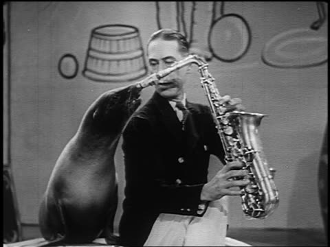 vídeos de stock, filmes e b-roll de b/w 1954 seal blowing saxophone being held by man in circus - um animal