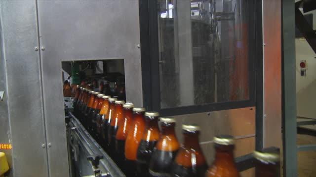 ms sealed brown glass beer bottles moving along conveyor / wau, western bahr el ghazal, sudan  - vakuum stock-videos und b-roll-filmmaterial