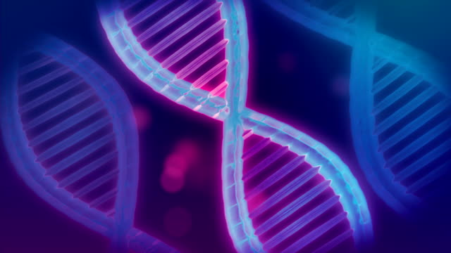 seamless dna strand in neon color, 4k loop - chromosome stock videos & royalty-free footage