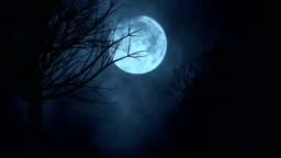 Seamless loop time lapse of moon night sky. spooky trees silhouette. darkness. scary sky. clouds moving