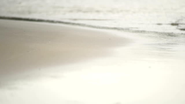 Seamlessly Waves On The Beach.