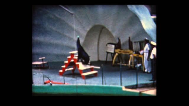 1962 seaquariam - cetacea stock videos & royalty-free footage