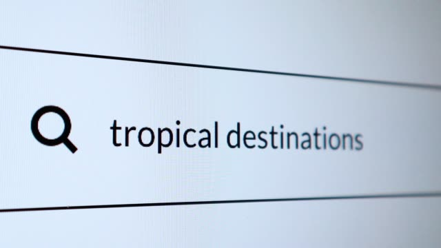 "search for ""tropical destinations"" word on the internet - search engine stock videos & royalty-free footage"