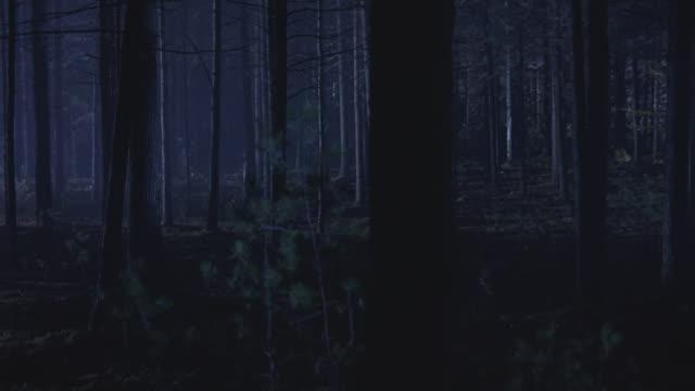 vidéos et rushes de search lights flash over a forest at night. - fantasmagorie