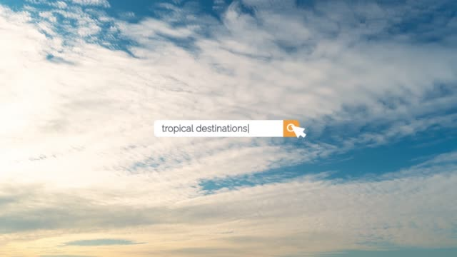 searching the question of tropical destinations on browser search box in 4k resolution - search box stock videos & royalty-free footage
