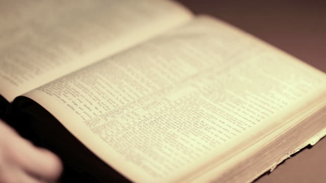 vidéos et rushes de recherche sur un livre vintage (hd, ntsc - couverture de livre