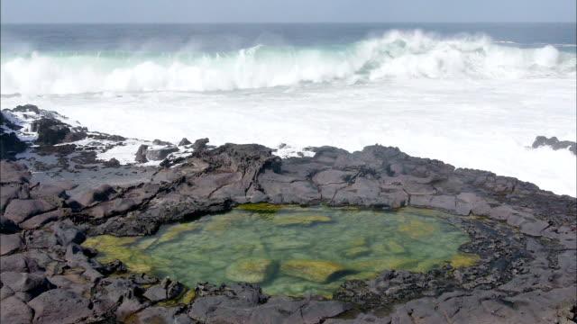 seascape and tidepool of seogwipo, jeju island, south korea - tide pool stock videos & royalty-free footage